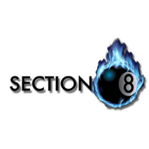 The Section 8