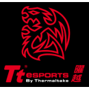 Tt eSports